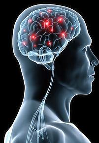 Piezoelectirc response image