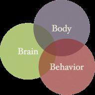 bodybrainbehavior-color